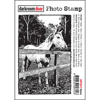 Darkroom Door Photo Stamp - HORSE